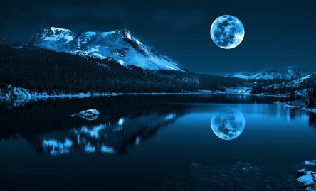Blue-Moon-Woodland-Springs-Colorado.jpg