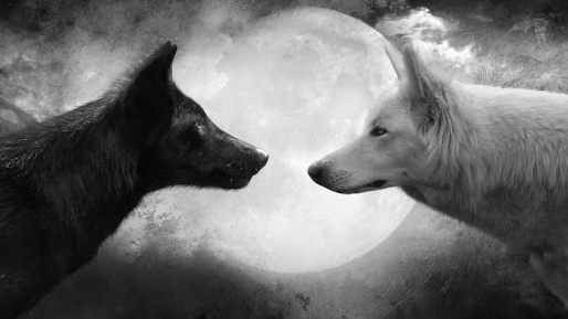 Wolf-and-Moon-Cool-HD-Wallpapers.jpg